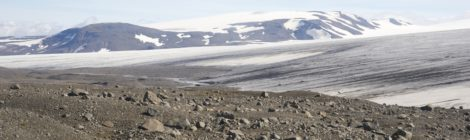 Petra awarded an Arctic Field Grant