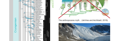 New review paper on glacier algae